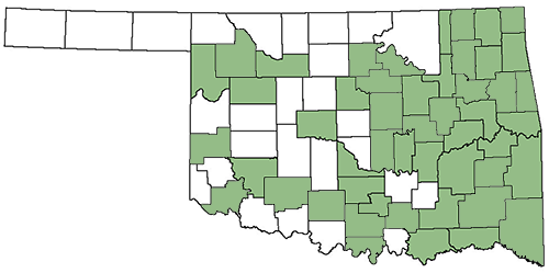 Oklahoma County Coverage